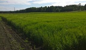 Åland2014