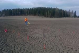 Rutorna mättes ut för hand, 5*2 meter och två upprepningar av varje.
