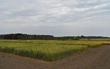 Besök Ålands Försöksstation