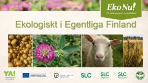 Ekologiskt i Egentliga Finland