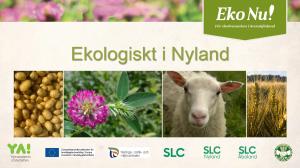 Ekologiskt i Nyland