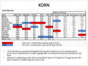 Korn 2014