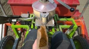 Då kör vi igång! Först ut är kornet.